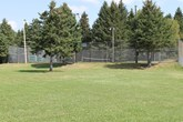 Photo of East Ferris Tennis Courts